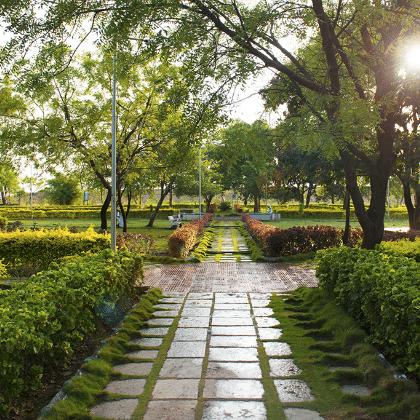 Suryalake view